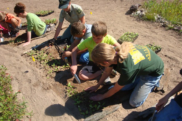 Life of Lake Superior youth planted 5000 wildflower plugs